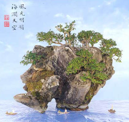 Bonsai Rockland